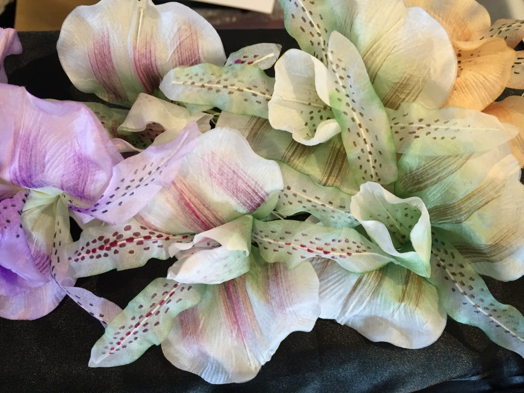 Divine orchids from ChatterBlossom